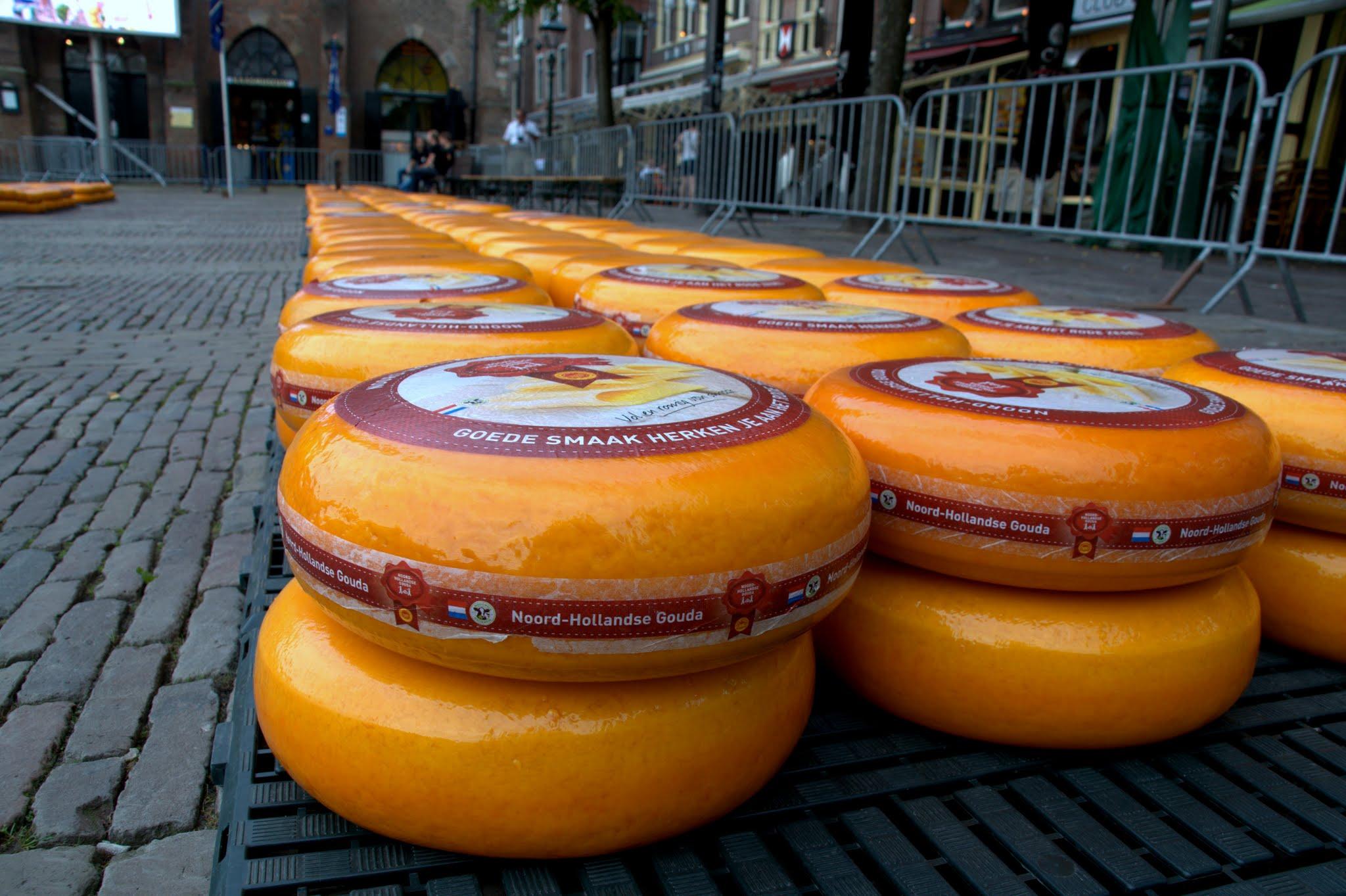 c625a18c282c La pesa del formaggio di Alkmaar – Scuola di Viaggio